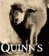 Quinn_logo_72dpi.jpg